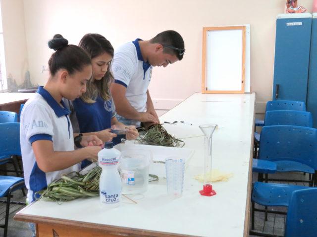 Estudantes de Manaus produzem repelente natural